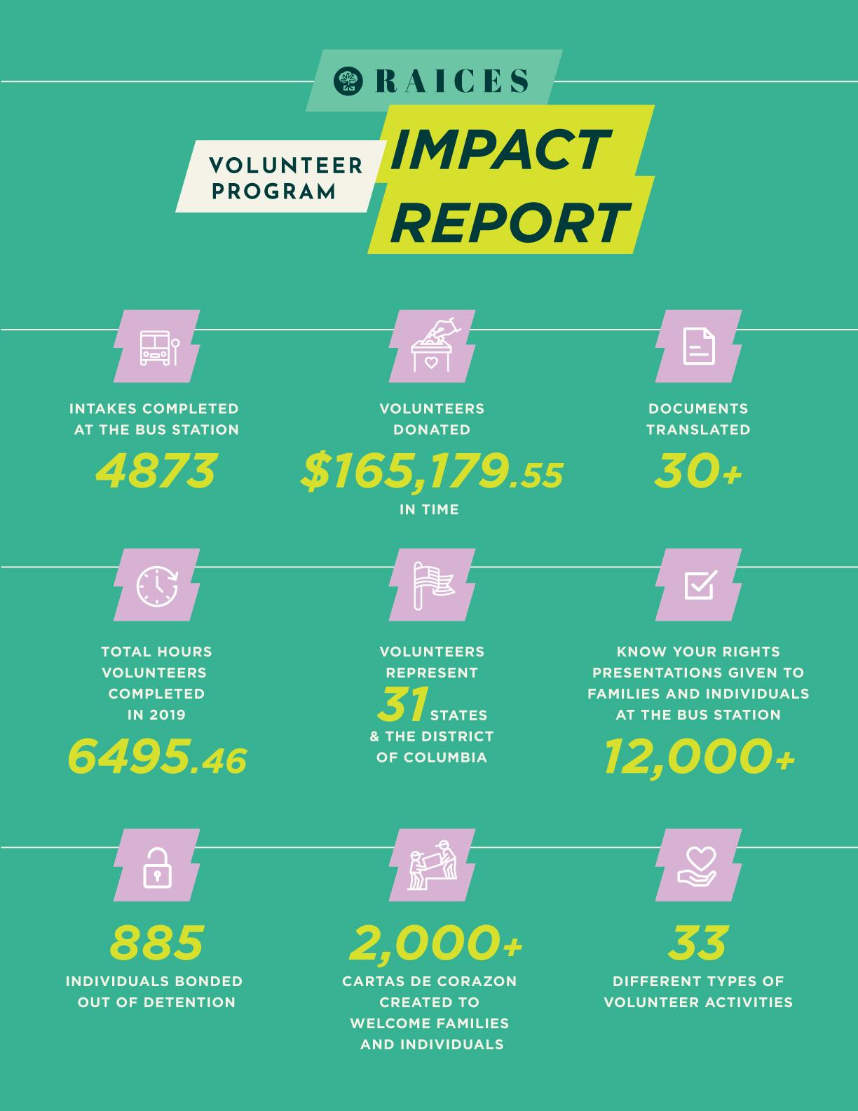 Volunteer Impact Report 2020